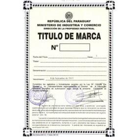 Änderung Markeninhaber (Rechtsnachfolge) Paraguay