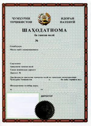 Markenanmeldung Tadschikistan
