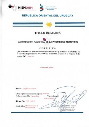 Vertretung des Markeninhabers vor dem Markenamt Uruguay