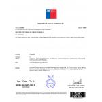 Verlängerung Design Patent Chile