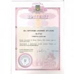 Verlängerung Design Ukraine