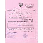 Verlängerung Design Patent Kuwait
